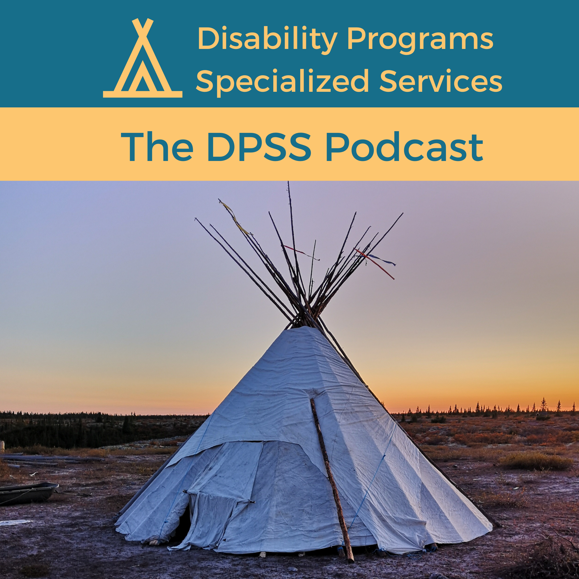 Disability Programs Specialized Services